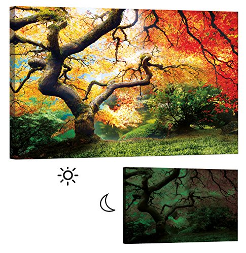 LightFairy Glow in the Dark Canvas Painting - Stretched and Framed Giclee Wall Art Print - Trees Forest Outdoor Red Maple - Master Bedroom Living Room Decor - 6 Hours Glow - 46 x 32 inch by LightFairy