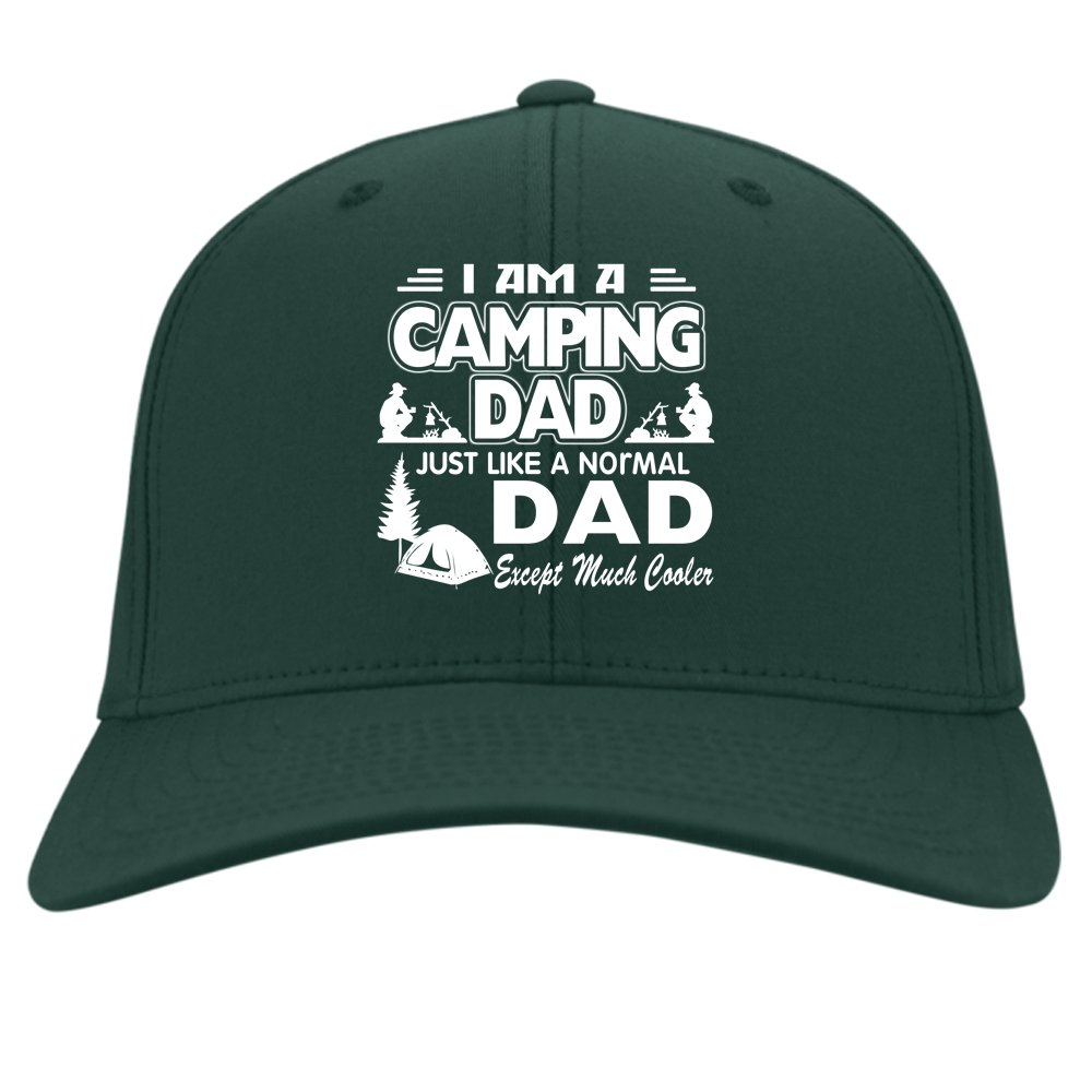 Im A Camping Dad Cap Just Like A Normal Daddy Hat