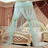HUEHFUEGF Luxury dome princess bed canopy mosquito net, Suspended ceiling Floor Double Insect fly protection screen-D Queen1