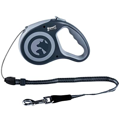 EC.TEAK Retractable Dog Leash