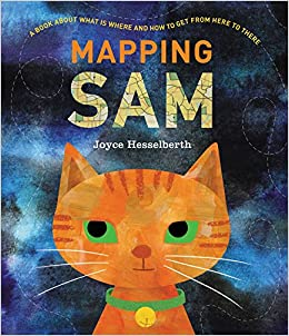 Image result for mapping sam amazon