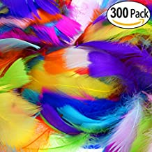 300Pcs Decor Feathers,Colorful Feathers for DIY Craft Wedding Home Party Decorations
