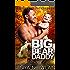 Big Bear Daddy (Sweetwater Father Bears Book 1)