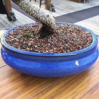 Joebonsai Genuine Black Lava Gravel Bonsai Tinyroots-Brand Top Dressing One Pound Great For Bonsai Landscaping/Design Ph Balanced All-Natural: Garden & Outdoor