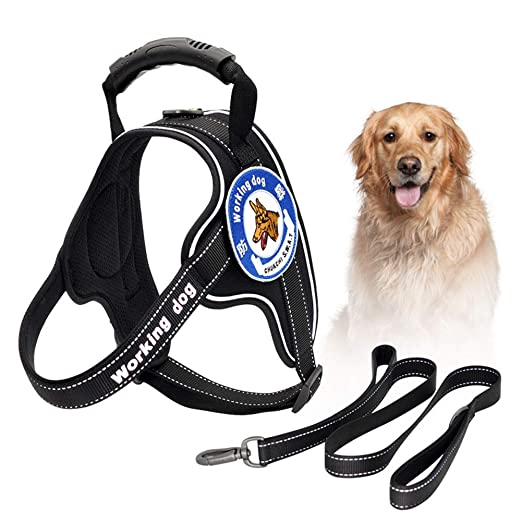 GYPING Ajustable Arnes Seguridad Chaleco Dog Vest Harness con la ...