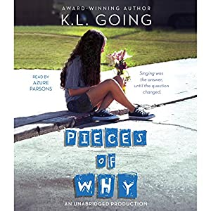 Pieces of Why Audiobook