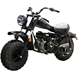 M MASSIMO MOTOR Warrior200 196CC Engine Super Size Mini Moto Trail Bike MX Street for Kids and Adults Wide Tires Motorcycle Powersport CARB Approved (Black)