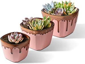 T4U Succulent Planter Pot with Drainage 3/4/5 Inch - Pink Ceramic Pots Pack of 3 Different Sizes Pots for Herbs Cactus Plants Flowers - Modern Small Square Pots for Home Office Decoration Garden Gift