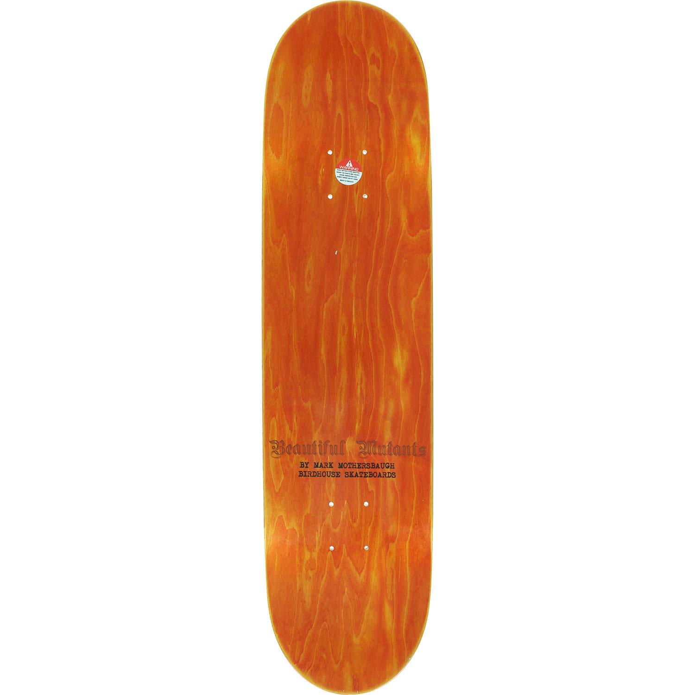 3a406c83 Amazon.com : Birdhouse Skateboards Clint Walker Beautiful Mutants  Skateboard Deck - 8.25