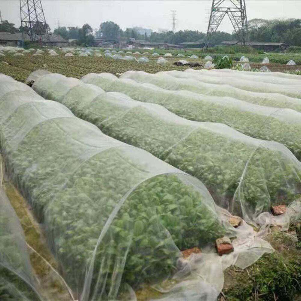 6x2.5m 6SHINE Red Aves Barrera Frutas Cultivos Plantas Control plagas Malla Insectos al Aire Libre F/ácil Uso Huerto Vegetal Herramienta /Árbol Malla Protectora Invernadero