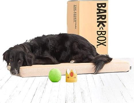 BarkBox Cama de espuma viscoelástica para perro, tamaños S-XL, 4 ...