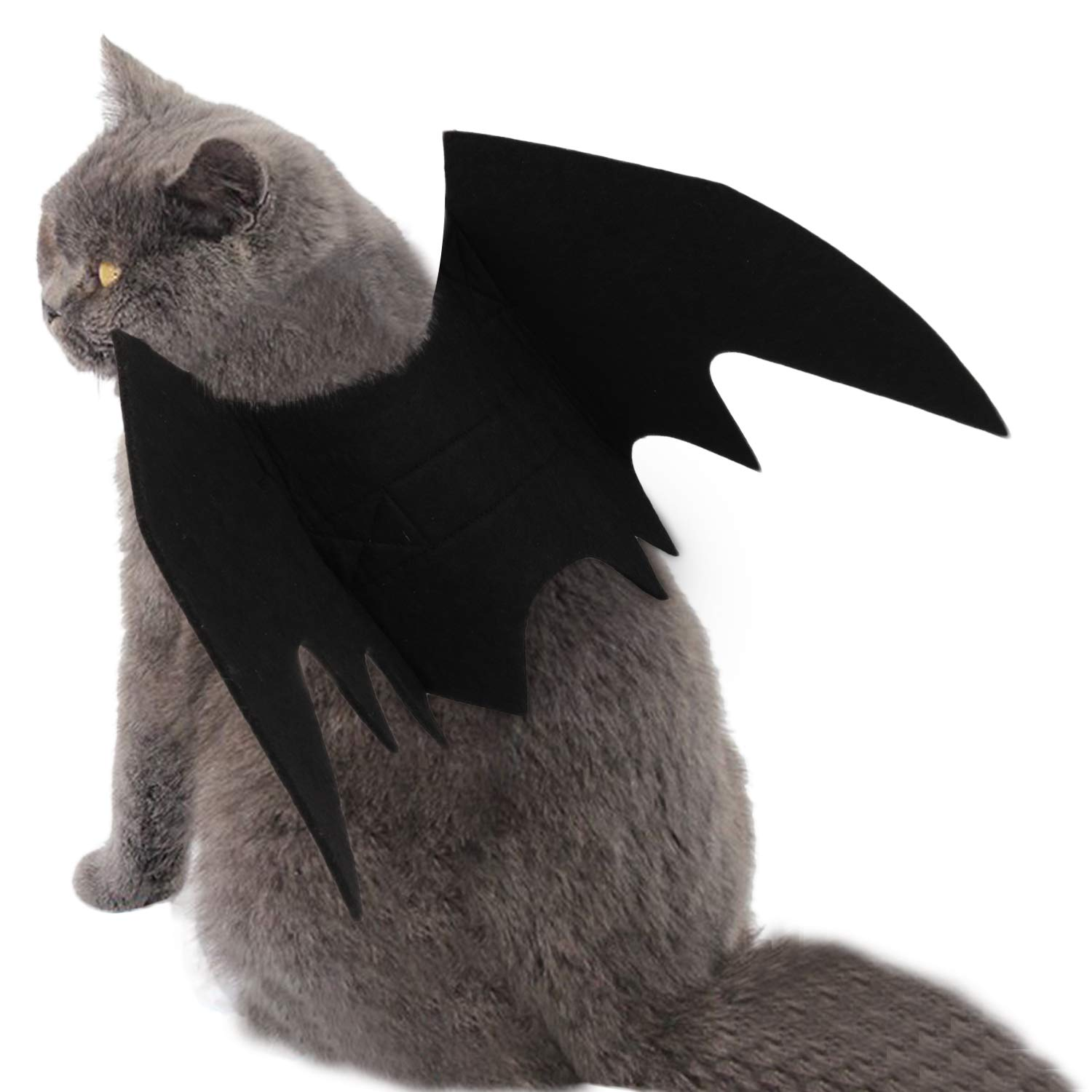 Legendog Cat Halloween Costume,Pets Costumes Clothes Halloween Pumpkins Bell Bat Wings Cat Bat Costume Halloween cat outfit for Puppy Dog Cat