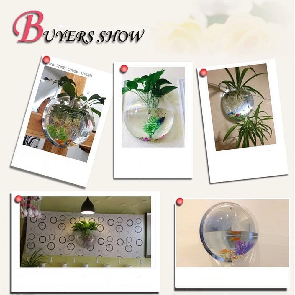 Kangkang@ 15cm Diameter Mini Acrylic Round Fish Bowls Wall Hanging Aquarium Tank Aquatic Pet Flower Plant Vase Wall Mount Fah Tank (Mirror Face) by Kangkang (Image #4)