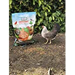 Amzey Dried Mealworms 11 LBS - 100% Natural for Chicken Feed, Bird Food, Fish Food, Turtle Food, Duck Food, Reptile Food, Non-GMO, No Preservatives, High Protein and Nutrition 7