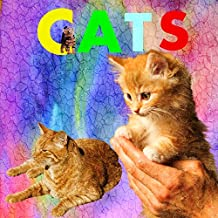 CATS: Playing With Your Cat And Caring For Your Cat,Signs Your Cat Actually Loves You, How Much Do You Really Know About Cats? (The Most Popular Cat Breeds 2015)