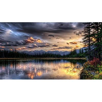 NA Wooden Jigsaw Puzzle 1000 PCS Forest Lake Nature Landscape Large Size 1000 Pieces of Wooden Puzzle,Unique Home Decorations and Gifts(2851): Toys & Games