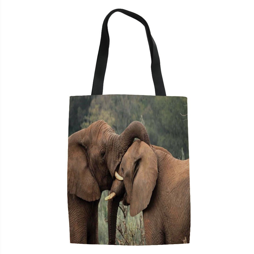 IPrint Safari Decor,Two Wild Savanna Elephants Wrestling Cute Nature Icons South African Animals Game Photo,Brown Green Printed Women Shoulder Linen Tote Shopping Bag