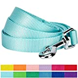 Blueberry Pet 12 Colors Durable Classic Dog Leash 5 ft x 3/4', Mint Blue, Medium, Basic Nylon Leashes for Dogs