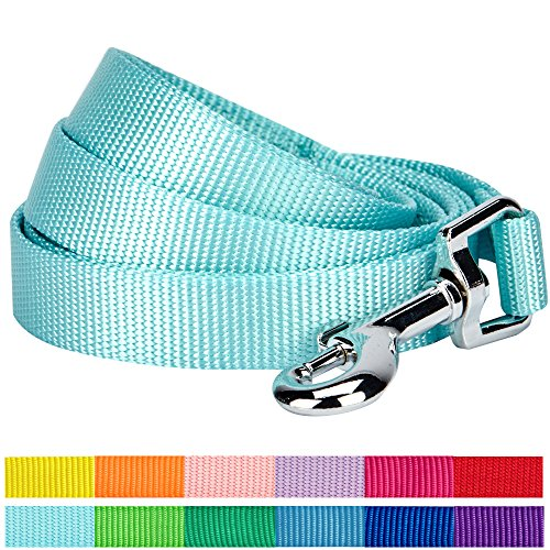 Blueberry Pet Durable Classic Leashes