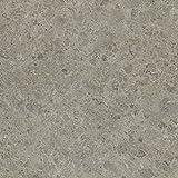 Formica Brand Laminate 093071234512000 Silver Shalestone Laminate, Silver Shalestone Scovato