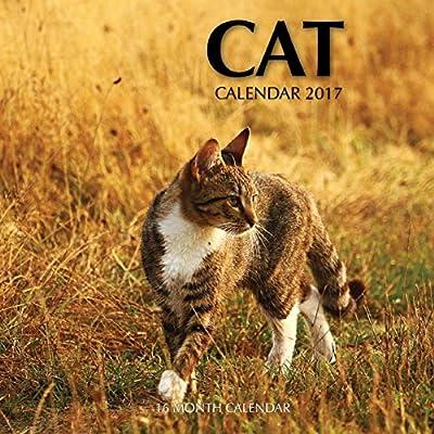 Cat Calendar 2017: 16 Month Calendar
