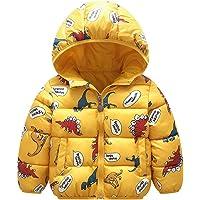 Baby Jongen Puffer Jas Kids Hoodie Jas Meisje Dikke Warme Winterjas 1-2 Years Dinosaur Geel