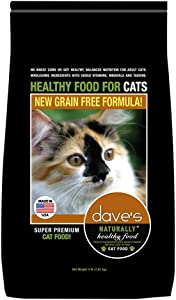 Dave's Pet Food Healthy Grain-Free Dry Cat Food, 4 Pounds, Chicken, Made in The USA