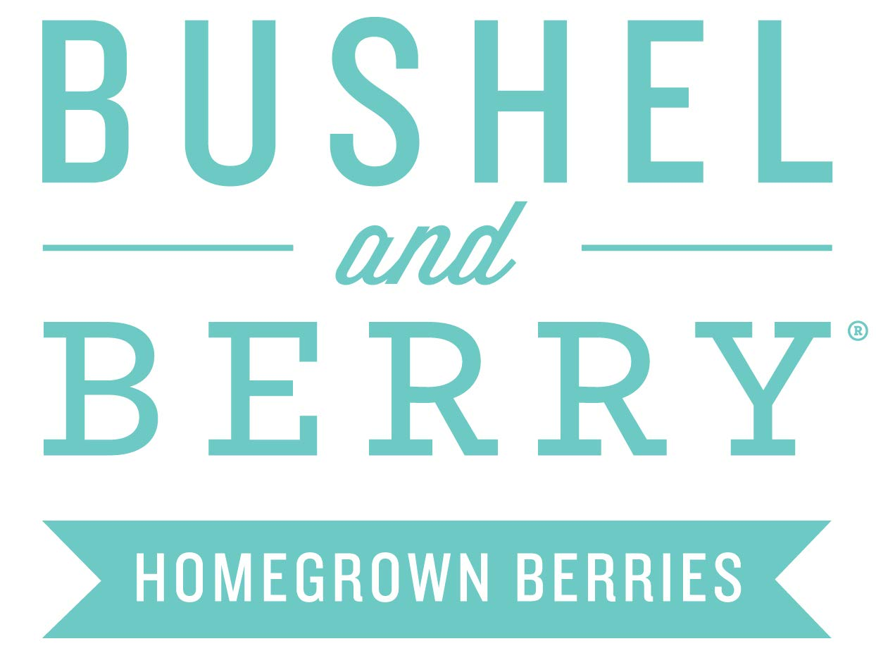 Bushel and Berry The Full Collection - 6 Piece - Cottage Hill - Berry Plants by Cottage Hill (Image #8)
