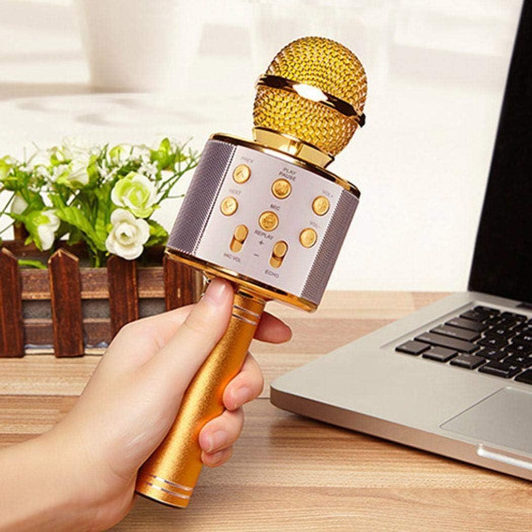 dalina Wireless Bluetooth Microphone Audio Mobile Phone Karaoke Microphone Microphones