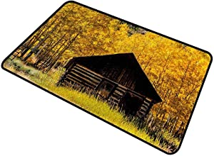 DESPKON-HOME Autumn, Bath Mat Farmhouse in Aspen Tree Washable Indoor Outdoor Carpet Wear-Resistant Easy to Clean 24x36 Inch
