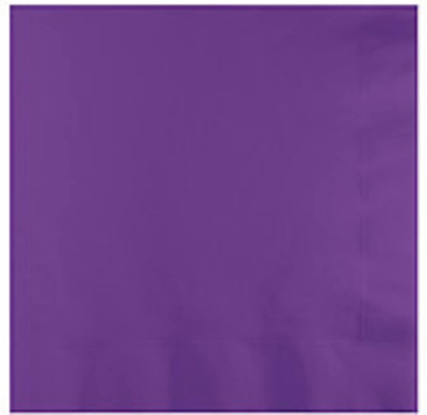Creative Converting Touch of Color 2-Ply 50 Count Paper Lunch Napkins, Amethyst Purple