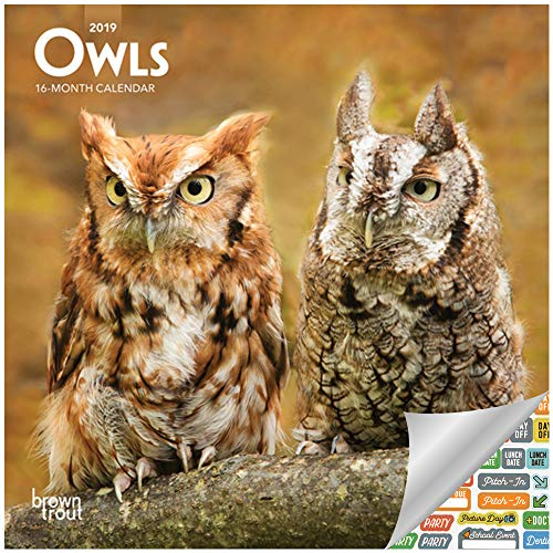 - Owls Calendar 2019 Set - Deluxe 2019 Owls Mini Calendar with Over 100 Calendar Stickers (Owls Gifts, Office Supplies)