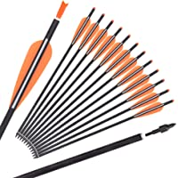 """20 inch Carbon Crossbow Bolts Hunting Arrows 3.8/"""" Easton Vanes Changeable Points"""