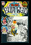 BUM WADD 1971-UNDERGROUND COMIX-INJUN JOE-ALTERNATIVE- RARE - FN