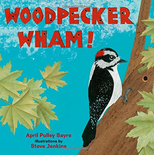 Image result for woodpecker wham