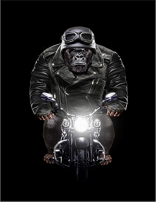 【FOX REPUBLIC】【ゴリラ バイク ヘルメット】 黒光沢紙(黒フレーム付き)A1サイズ B077ZXHNDK A1|黒光沢紙(黒フレーム付き) 黒光沢紙(黒フレーム付き) A1