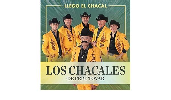 Llego el Chacal by Los Chacales De Pepe Tovar on Amazon ...