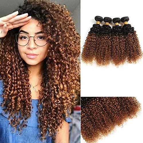 (4 Bundles Brazilian Hair Extension 1B/30 Ombre Brown Curls Hair Short Curly Hair Bundles Brazilian Kinky Curly Human Hair Extension 10 12 14 16 Inch Curls Hair)