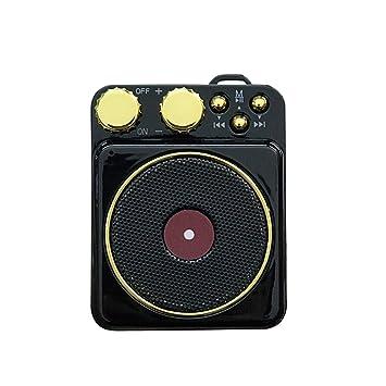 Technology Altavoz portátil, pequeño estéreo Retro del Tocadiscos ...