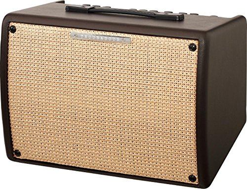 Watt Amplifier Combo 30 (Ibanez T30II Troubadour II Acoustic Guitar Combo Amplifier Brown - 30 Watt w/ Di)