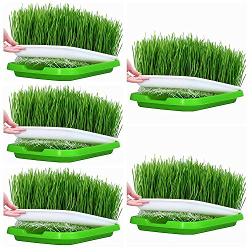 Petforu Seed Sprouter Tray, 5 Set Plant Germination Trays Double Layer Hydroponics Basket by Petforu