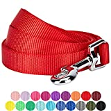 Blueberry Pet 19 Colors Durable Classic Dog Leash 5 ft x 5/8'', Rouge Red, Small, Basic Nylon Leashes for Dogs