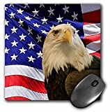 3dRose LLC 8 x 8 x 0.25 Inches Mouse Pad, Bald Eagle and American Flag (mp_21650_1)