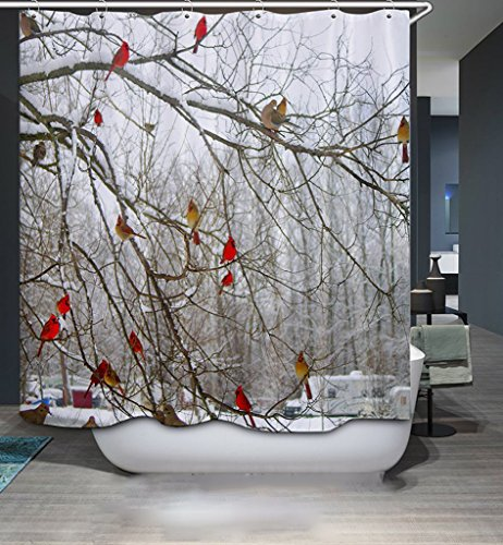 Oberora Birds in Winter Printed Bath Curtain Modern Personality Shower Curtain Bath Room Waterproof Curtains Bath Decoration with Hooks 1 b (Shower Curtains Clearance)