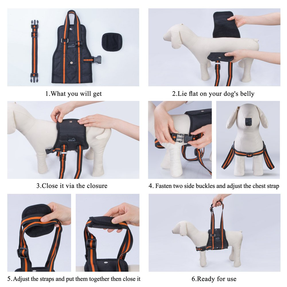 XL in Black Lifting Support Sling to Help Pet with Weak Back Leg Aid Mobility and Rehabilitation Suitable Senior Front Rear Crus Thigh Hip Injury Arthritis PETBABA Dog Lift Harness