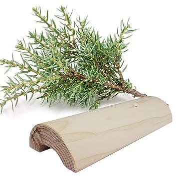 Amazon.com: Elixir Eco Green Cypress Trees Almohada de ...