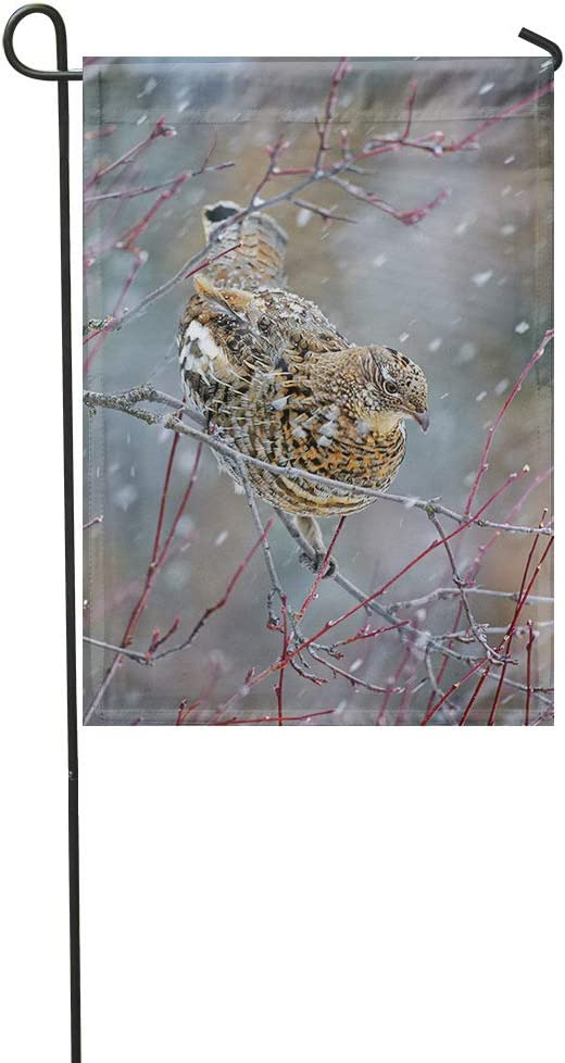 Vooft Grouse Double Sided Garden Flag Animal Ruffed Perched Tree Snowstorm Bird Bonasa Umbellus 28