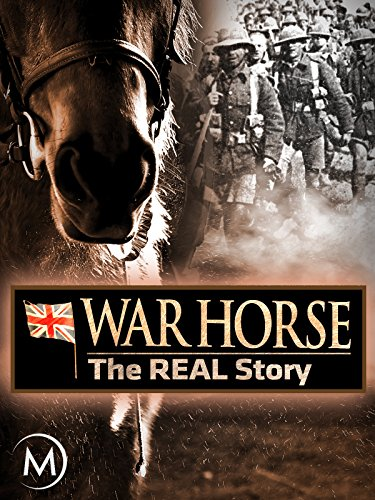 War Horse: The Real Story (Dog Horses Harness)