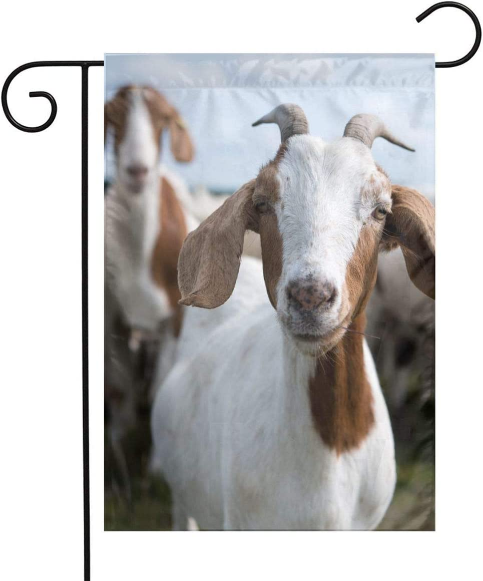 Goat Garden Flags Home Indoor & Outdoor Welcome Decorations,Waterproof Polyester Yard Decorative for Game Family Party Banner