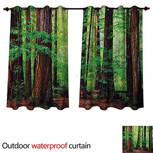 Woodland Home Patio Outdoor Curtain Redwood Trees Northwest Rain Forest Tropical Scenic Wild Nature Lush Branch W55 x L72(140cm x 183cm)